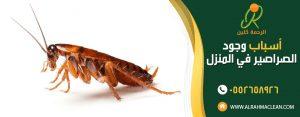 اسباب وجود الصراصير في المنزل - شركة مكافحة حشرات