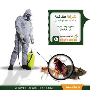 شركة مكافحة حشرات بحفر الباطن - رش مبيدات بحفر الباطن