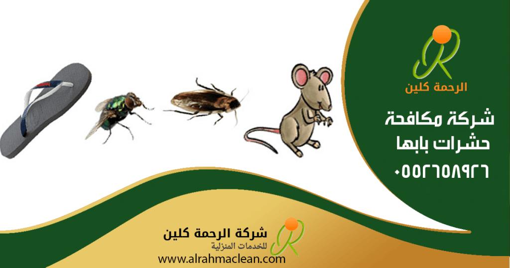 شركة مكافحة حشرات بابها - شركة رش مبيدات بابها