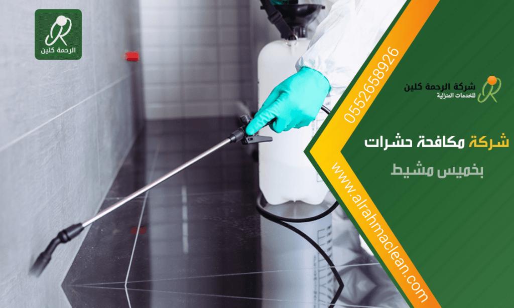 شركة مكافحة حشرات بخميس مشيط - شركة رش مبيدات بخميس مشيط