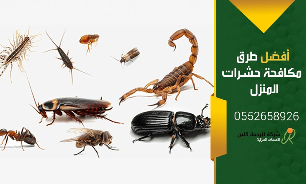 أفضل طرق مكافحة حشرات المنزل - شركة مكافحة حشرات بحفر الباطن
