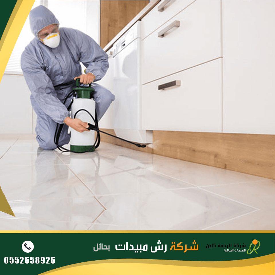 شركة رش مبيدات بحائل - شركة مكافحة النمل الابيض بحائل