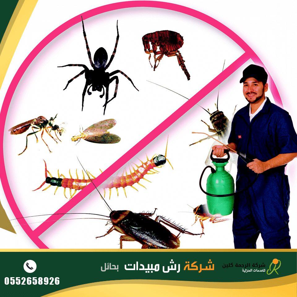شركة رش مبيدات بحائل - شركة مكافحة حشرات بحائل