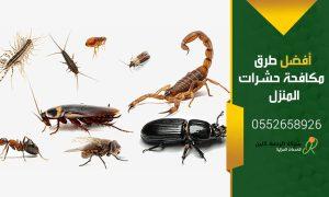 ابادة الحشرات المنزليه