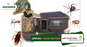 شركة ابادة حشرات بحفر الباطن