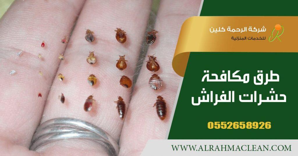 طرق مكافحة حشرات الفراش