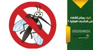 كيف يمكن القضاء علي الحشرات المنزليه المختلفة بطرق منزلية سهله وبسيطة