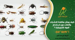 كيف يمكن مكافحة الحشرات والافات دون استخدام المواد الكيميائيه